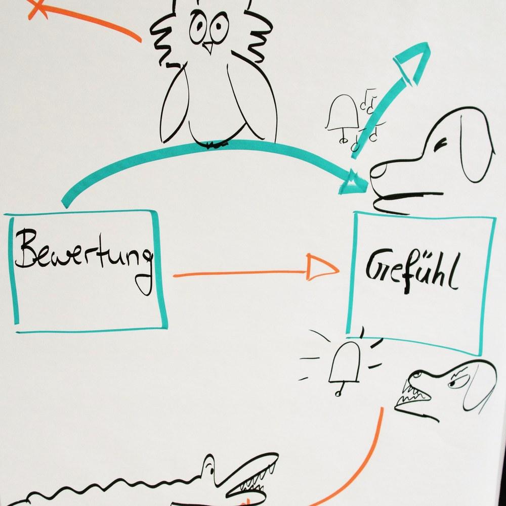 Bildungsspirit Kurzimpuls #007: Stress: Was passiert dabei im Gehirn deiner Schüler?